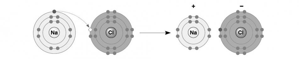 Elektronskallmodellen og hvordan Natrium og Klor blir til bordsalt